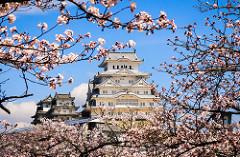 kyoto chateau globe travel voyage, circuit, jardins japon