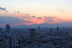 Japon globe travel voyage organisé, cerisiers, yoshino, mont koya
