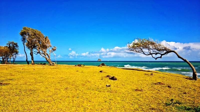 Voyage Guadeloupe organisé, sur mesure globe travel, circuit, voyage à la carte