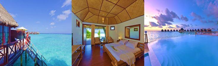 plongée maldives voyages ile gloeb travel