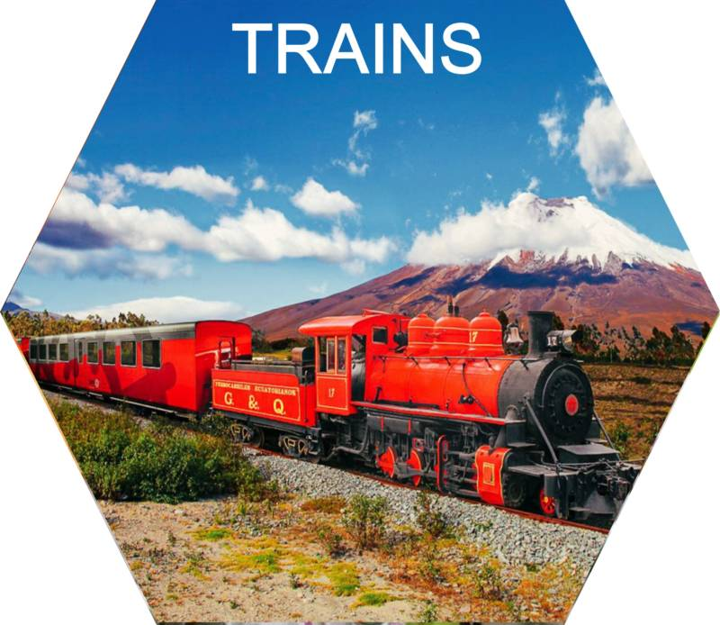 globe travel voyages train