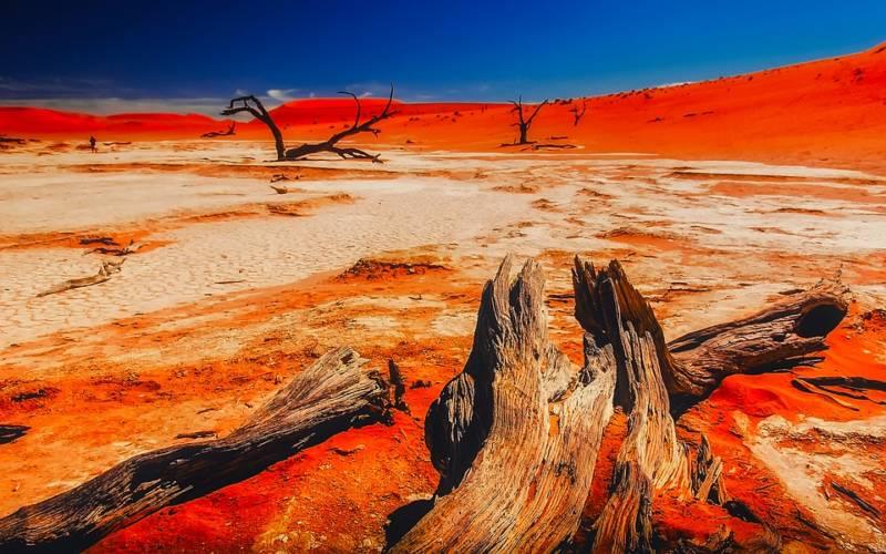 namibie voyage circuit, plages, désert, etosha globe travel
