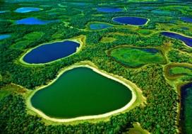 voyage brésil pantanal guide tour globe travel