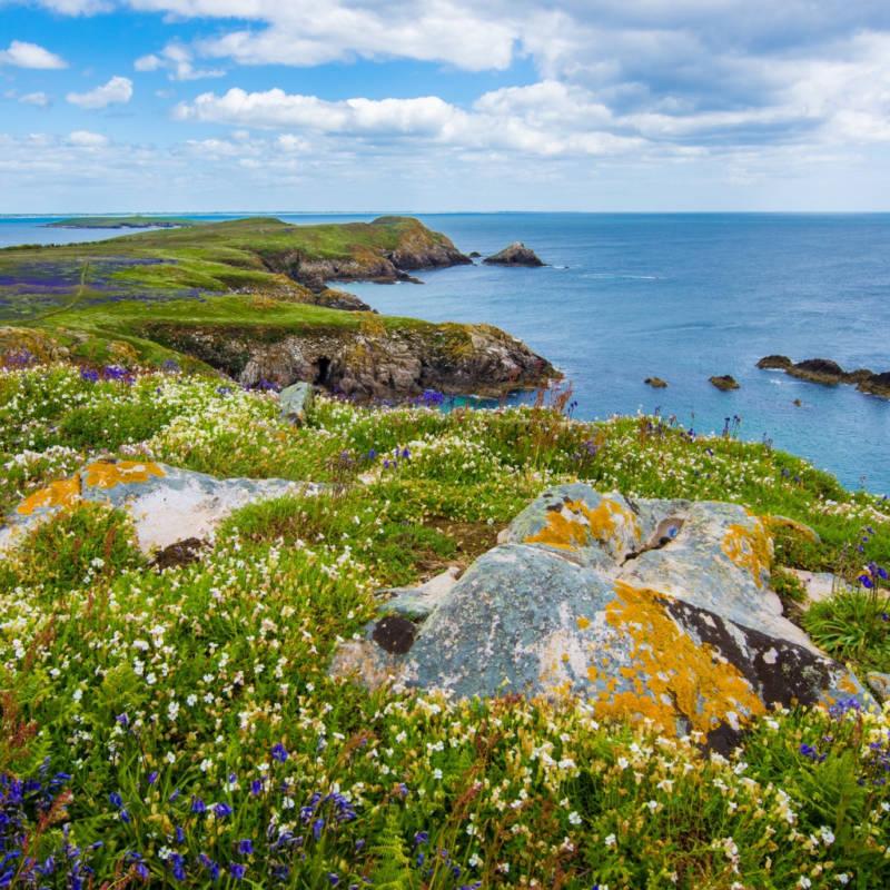 voyage-irlande-globe-travel