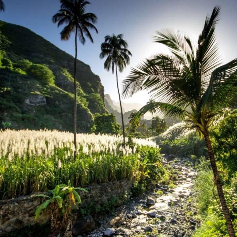 voyage-cles-en-main-cap-vert-globe-travel-plantations