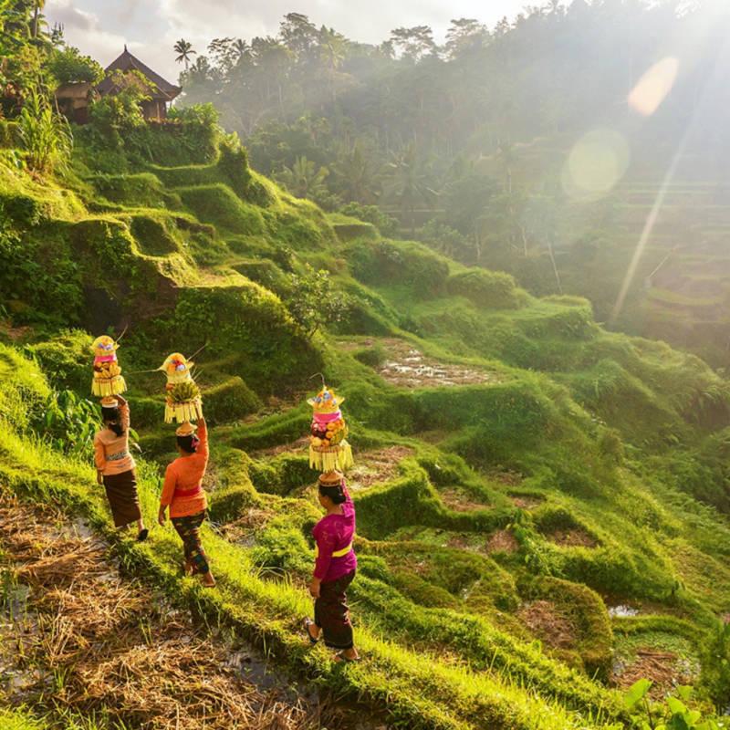 voyage-bali-indonesie-globe-travel-ceremonie