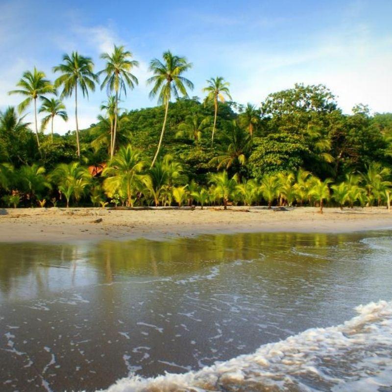 globe-travel-voyage-costa-rica-punta-leona