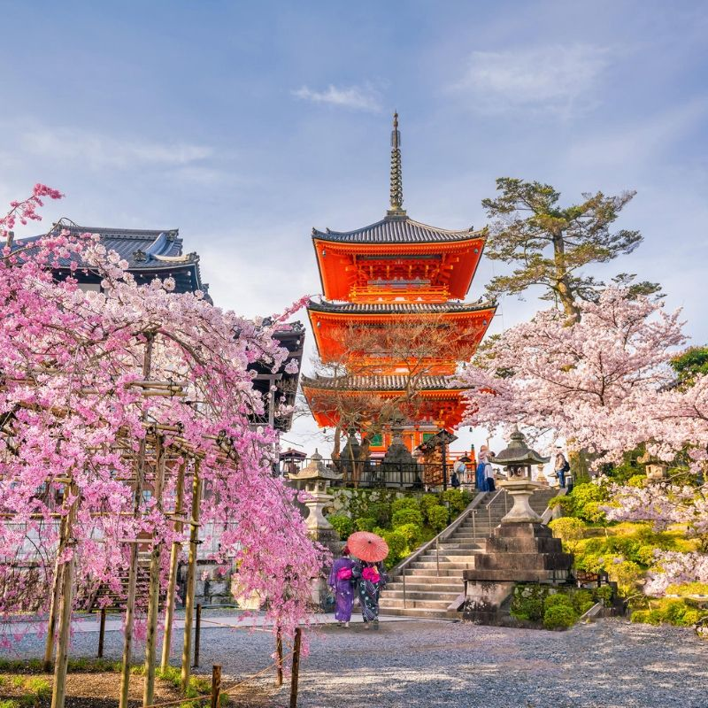 voyage-globe-travel-japon