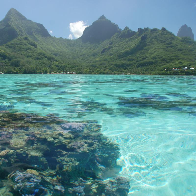 voyage-globe-travel-moorea-ile-polynesie