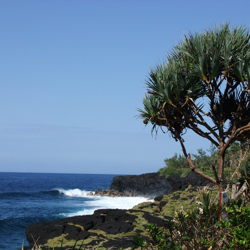 voyage-globe-travel-faune-flore-polynesie
