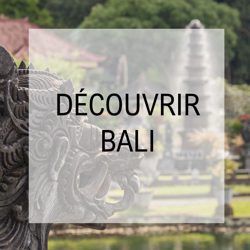 voyage-globe-travel-presentation-bali